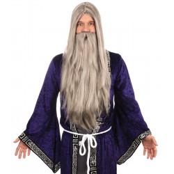 Light Grey Wizard Wig